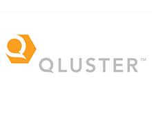 Qluster-org1-960x625